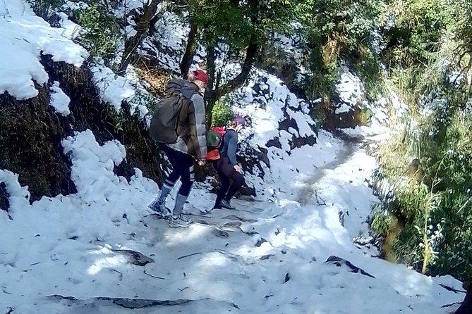 6 Days Poon Hill - Ghandruk Circuit Trek from Kathmandu