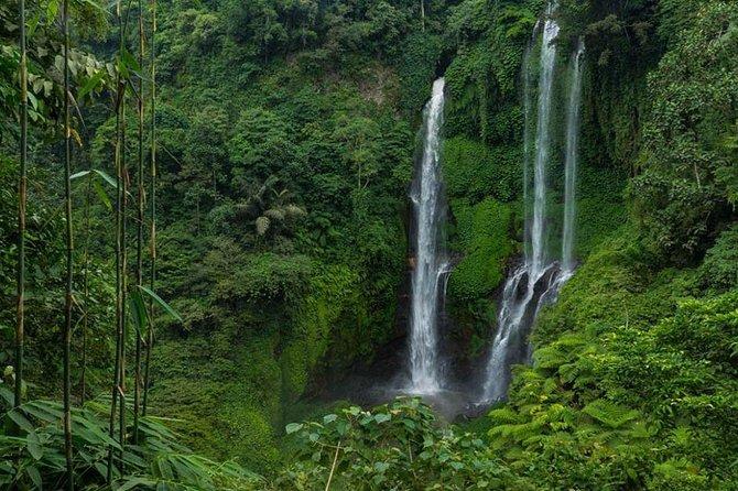 Sekumpul bali waterfall Traking