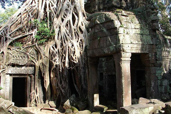 Angkor wat, Ta Prohm and Banteay Srei Full Day private Tour
