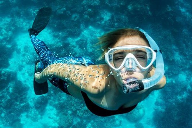 Try Scuba Dive Tour in Dubai