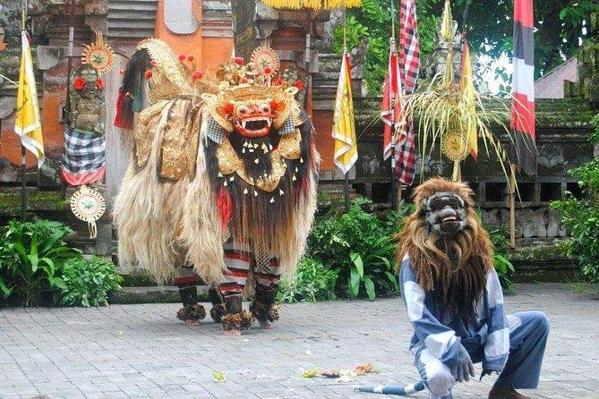 Bali Traditional & Culture Private Tour