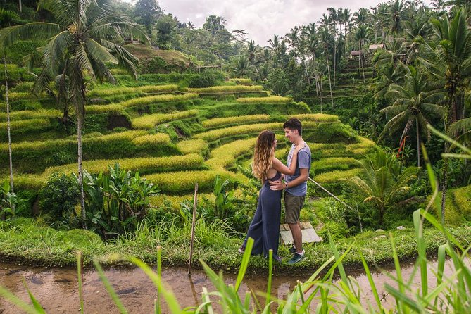 Ubud City Tour II: Monkey Forest, Palace, Art Market, and Rice Terrace