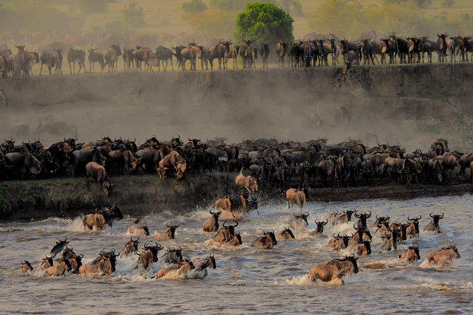 Photo Safari and River Crossing