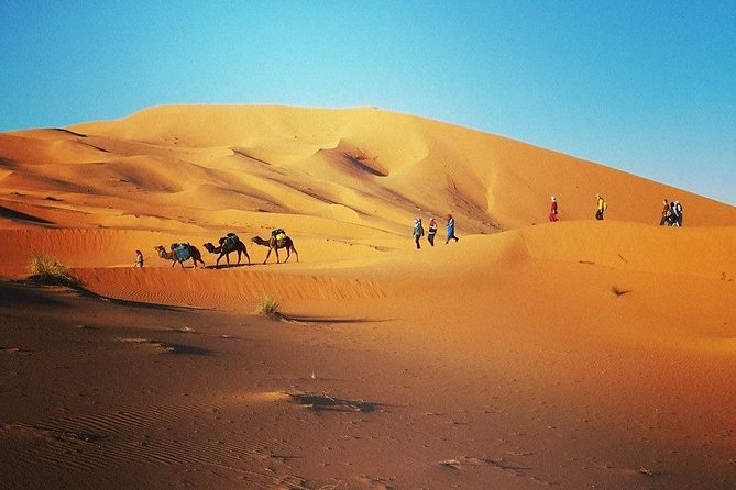 5 days Sahara Desert tour from Casablanca