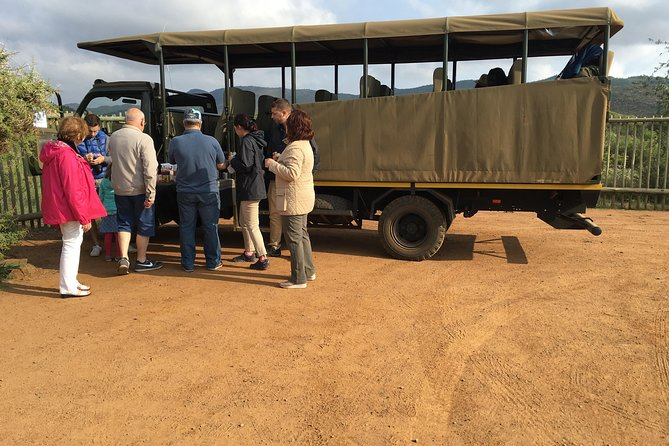 Pilanesberg National Park Safari from Johannesburg photo 3