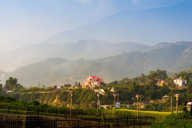 Shimla Nature Walk(2 Hours Guided Walk)