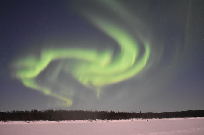 Rovaniemi Northern Lights Hunt with a Native and Photography Expert Guide