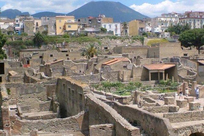 Shore excursion Herculaneum Mt Vesuvius and winery visit