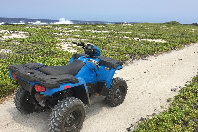 Aloha ATV Adventures