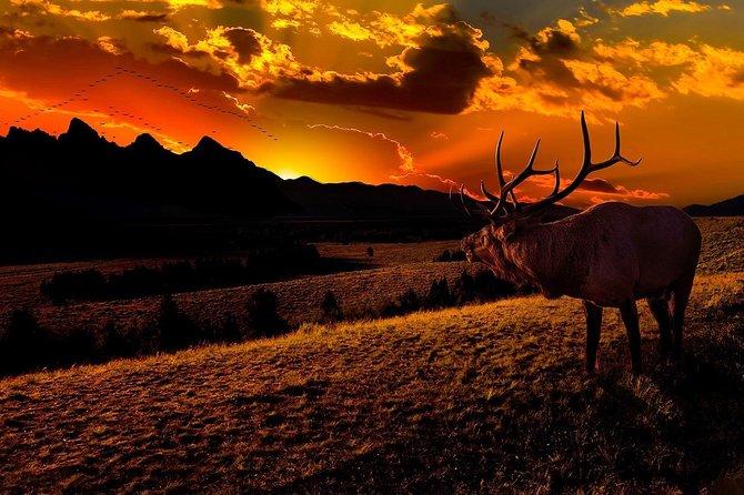Take a Private Sunset Tour of Grand Teton National Park