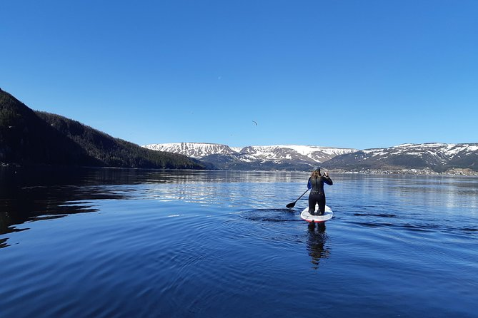 Stand-up Paddle Board Tours