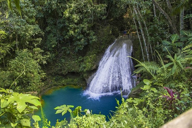 Blue Hole Secret Falls Adventure de Ocho Rios