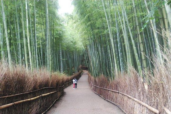 Kyoto Splendid Nature, Castle & Garden Exploring Tour