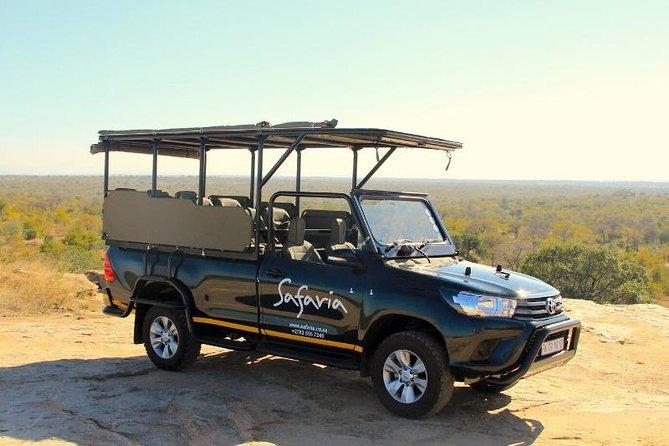 Best Safari Vehicle on Safari in Kruger National Park with Safaria