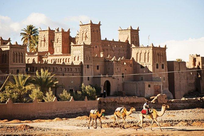 Berberes & Tuareg