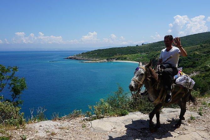 Birdwatching Albania