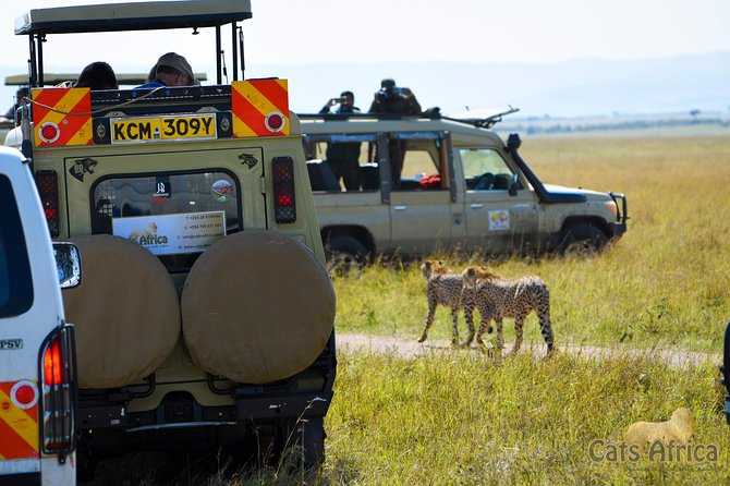 Masai Mara Paradise Safari 4x4 Gold