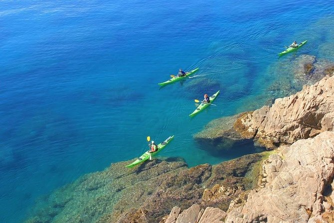 3-hour guided kayak + snorkel tour