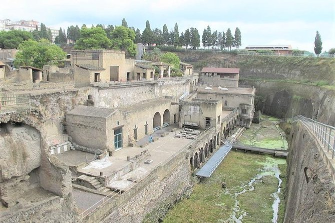 Skip-the-Line 2.5 Hours Herculaneum Ruins Private Walking Tour