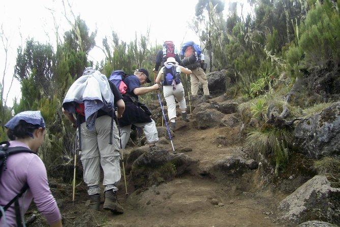 5 Days Mt Kenya Trekking - (Sirimon- Chogoria Route)