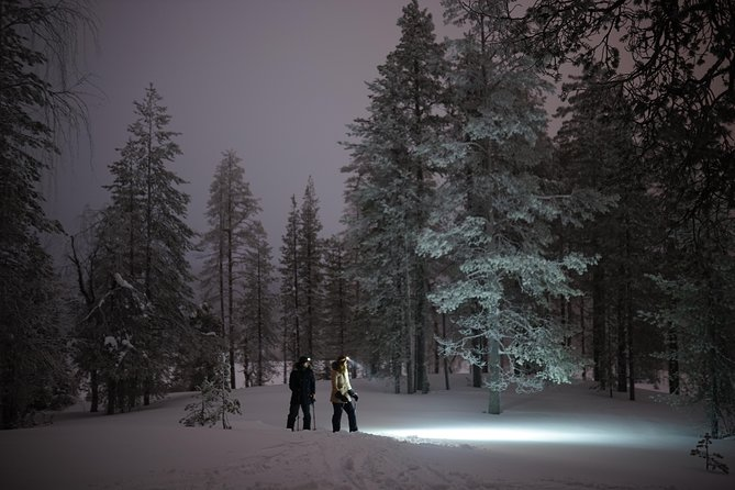 Ski Trekking under the Northern Lights