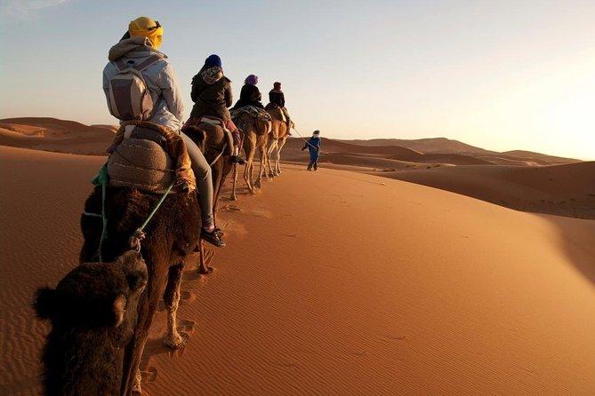 8 Days Trip Marrakech to Agadir via Ouarzazate with Pick Up