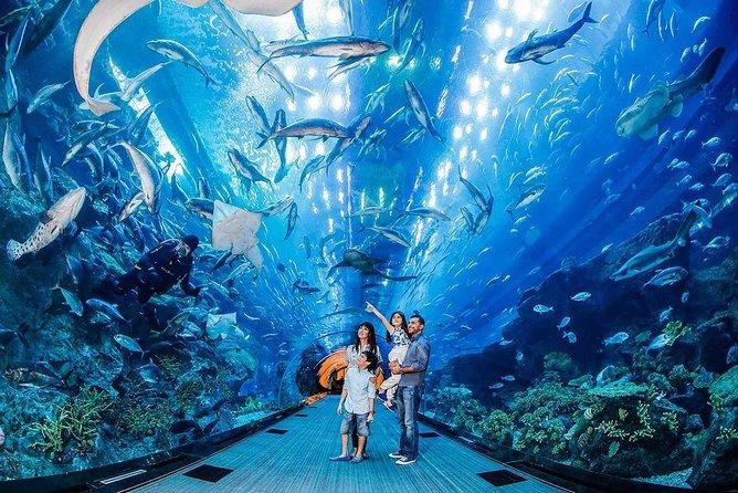 Dubai Aquarium and Underwater Zoo Admission Ticket