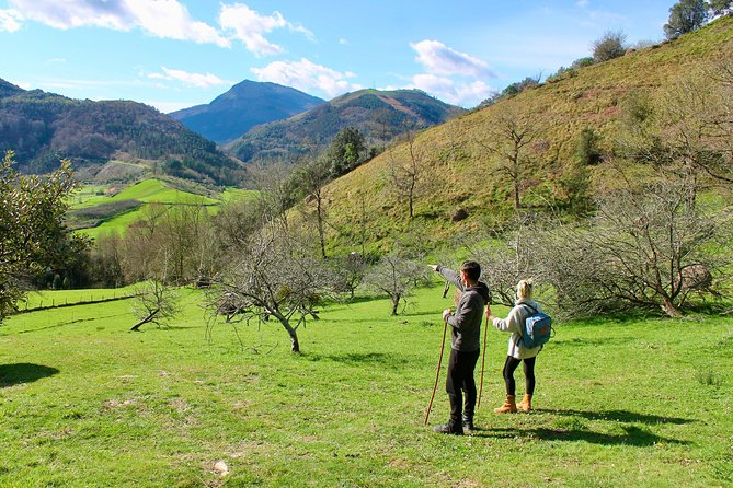 Walking Through Basque Rural History and Genuine Cider House Lunch