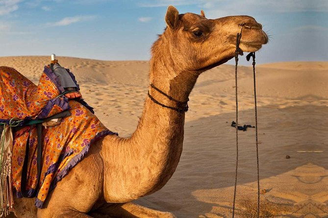 Private 3-Day Tour from Marrakech to Merzouga Desert and back