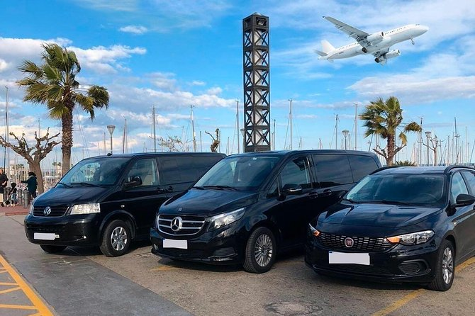 Fort Lauderdale Airport (FLL) to Port Everglades - Round-Trip Private Transfer