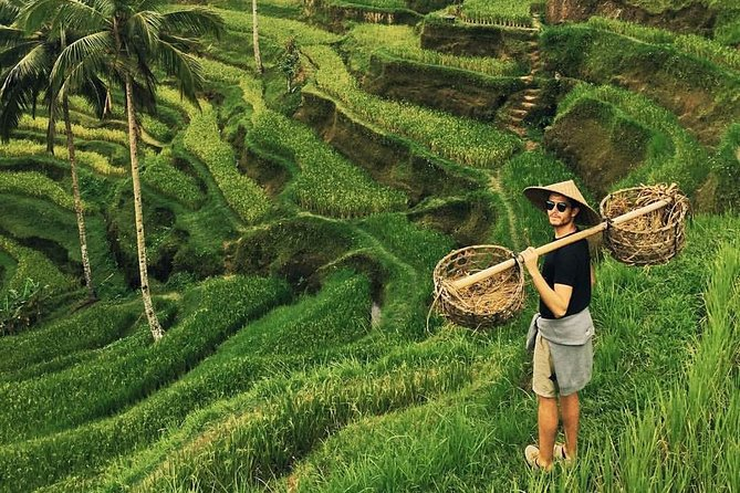 Private Tour : Amazing Bali Volcano with Jungle Swing Experience