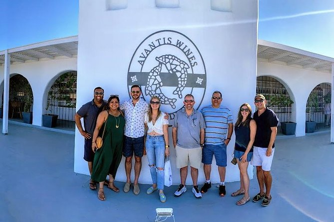 Santorini Half Day Wine Tasting & Winery Tour with Pickup
