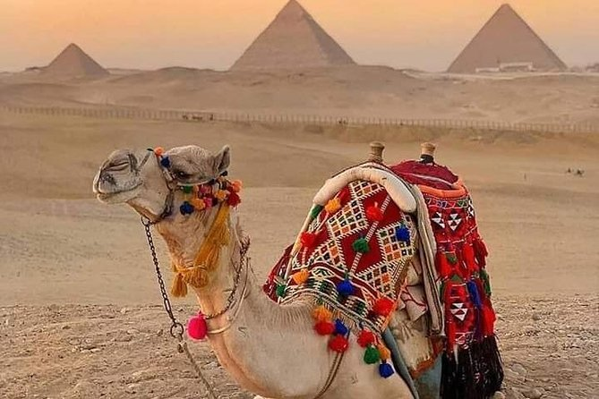 Private Half-Day Tour of Giza Pyramids by Camel or Horse