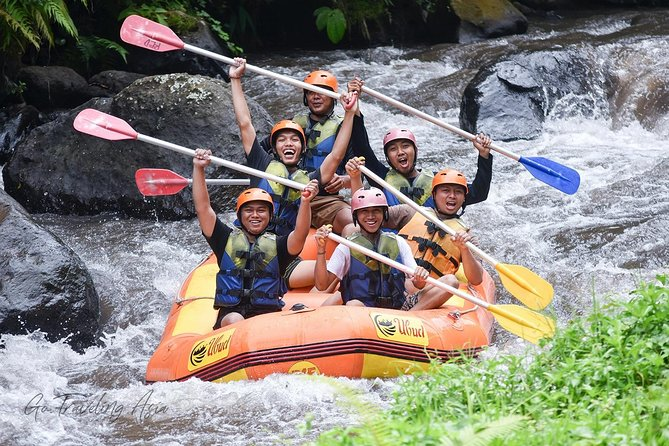 White Water Rafting in Bali with Pickup and Lunch