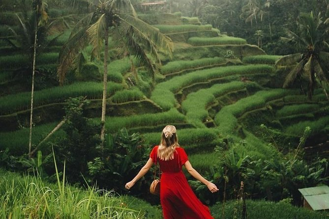 Best of Ubud - Jungle Swing - Monkey Forest - Waterfall - Water Temple & Wi-Fi