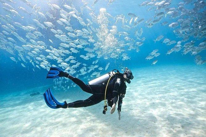 Hurghada: Red Sea Fun Cruise with Snorkeling