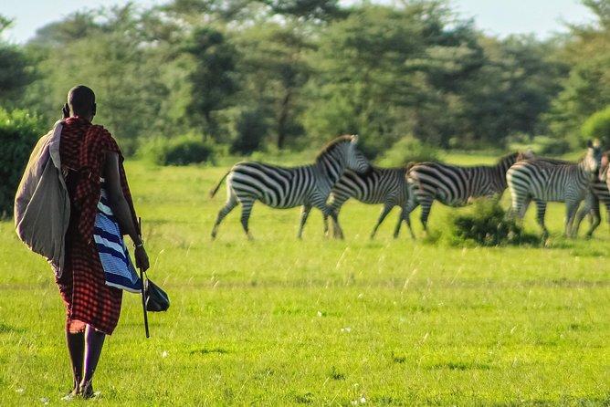 Mombasa 3 days safari in Tsavo and Amboseli Parks with bonus visit to Masai clan