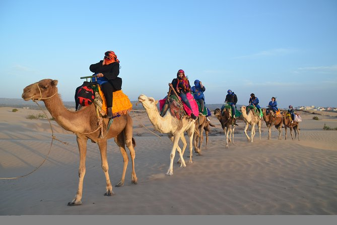 Essaouira: 4-hour ride on the back of Dromedary with meal.