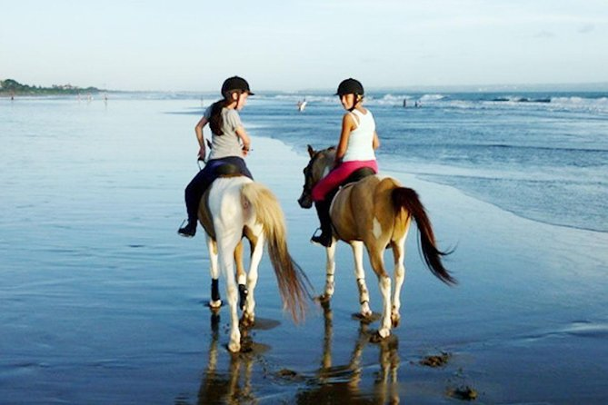 Full-Day Bali Horse Riding Adventure and Exploring Tour to Tanah Lot Temple