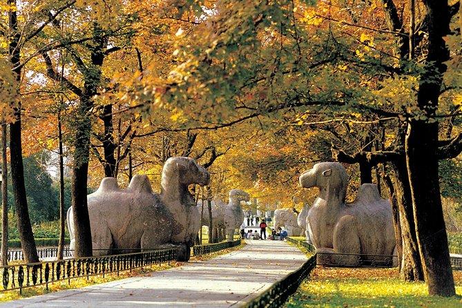 Private one day tour: Nanjing Dr.SunYat-sen's Mausoleum