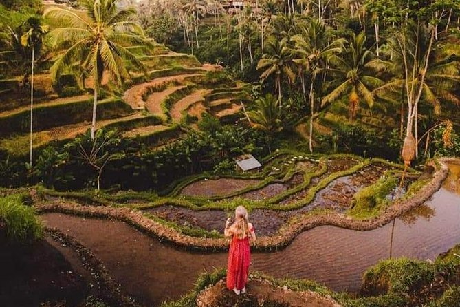 Bali Costumized Private Full-Day Tour