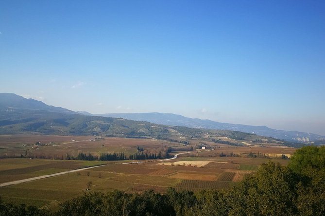 Nemea Wine Tour guided by Oenologists