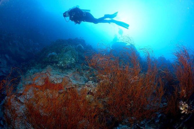 Shore PADI SCUBA Advanced Open Water Course