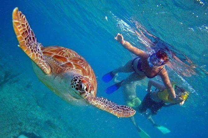 Sea Trip Hurghada (2 stop snorkeling - Giftun Island )
