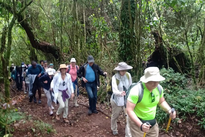 6-Days Hiking from Marangu Gate to Mandara Hut