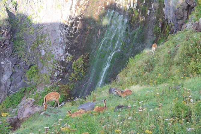 Furepe Waterfall Nature Walk