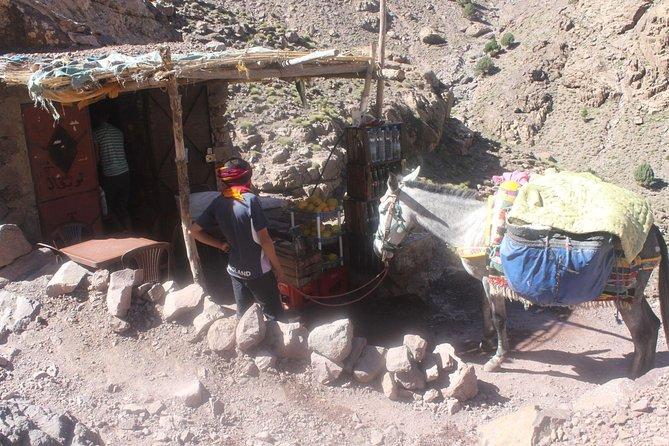 3-Day Mount Toubkal Guided Trek in Atlas Mountains