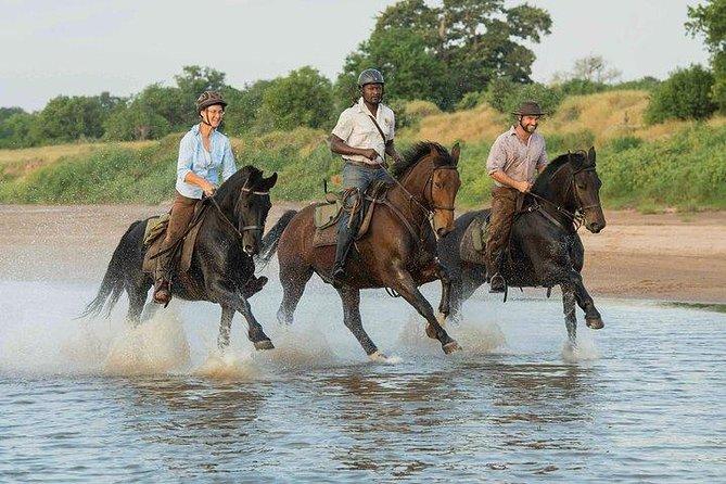Horse Riding Safari South Africa and Botswana 7 Nights