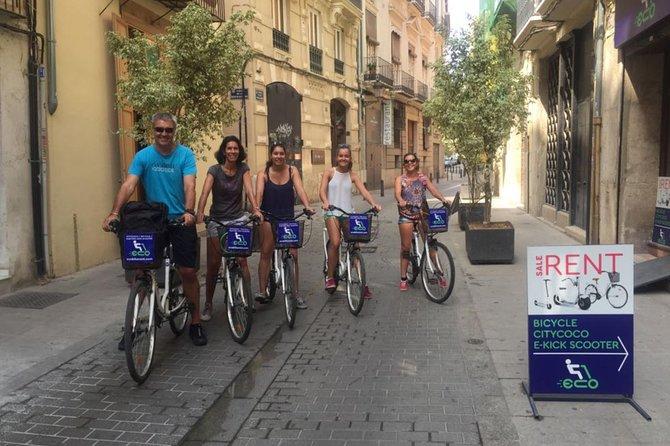 Tour on bikes (Valencia, Old Town, Turia, City of Arts and Sciences)