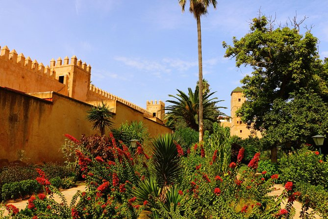 From Casablanca: Private 10 Days Imperial Cities and Desert Tour
